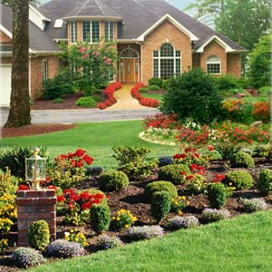 Landscaping all star fence and landscaping lawn grass for Punch home and landscape design won t install